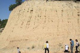 Denizli'de 9 milyon yıllık mamut ve gergedan fosilleri bulundu