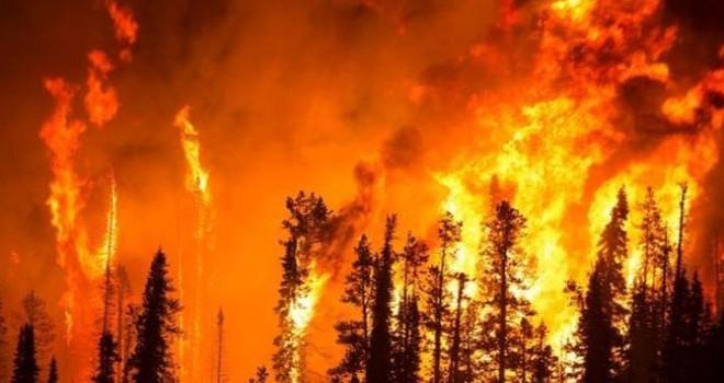 Orman yangınlarına karşı erken önlem
