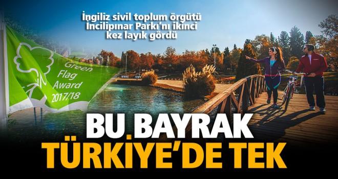 Türkiye'deki ilk ve tek Yeşil Bayrak İncilipınar'da