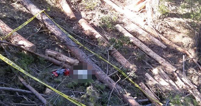 4 gündür kayıp olan orman işçisi, kestiği ağacın altında ölü bulundu