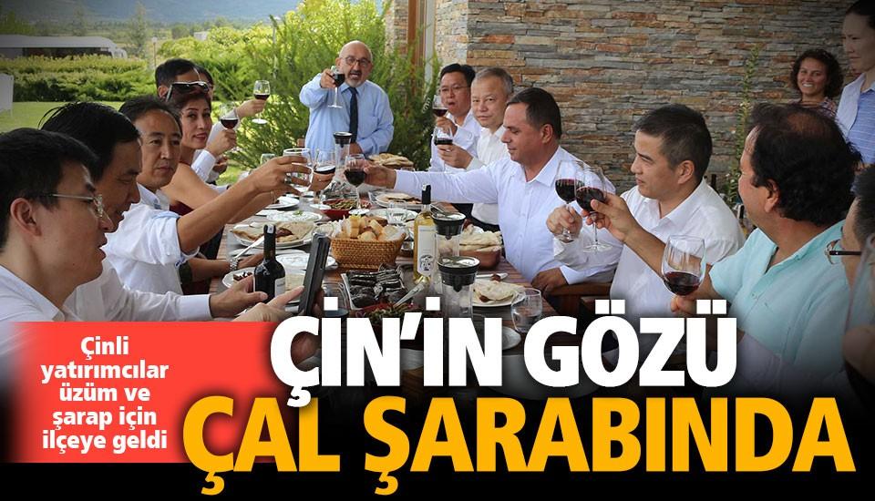 Çinli yatırımcılar Çal üzümü ve şarabı için geldi