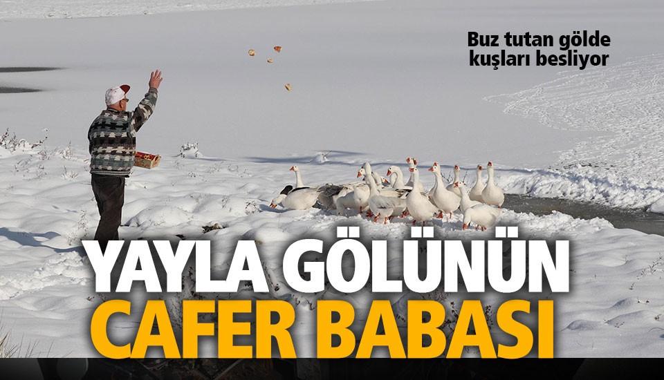 180 kuş çeşidinin yaşadığı Yayla Gölü buz tuttu